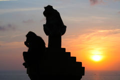 Monkeys at Uluwatu temple, Bali Indonesia. Silhouette monkeys at Uluwatu temple, Bali Indonesia Royalty Free Stock Images