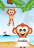 Monkeys on vacation Stock Photo