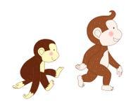 Monkeys were walking Stock Image