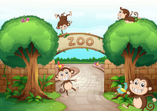 Monkeys in zoo. Illustration of monkeys in zoo and a green nature Stock Image