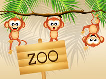 Monkeys in the zoo Stock Photos