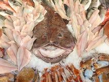 Monkfish and fresh fish royalty free stock image