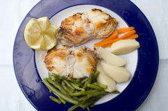 Monkfish with potatoes. Plate for restaurant Stock Images