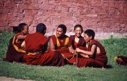 monks Arkivbild