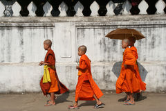 monks royaltyfri foto