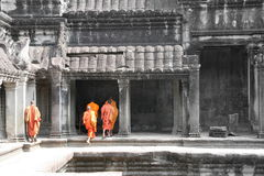 Monks. Group of monks in Angkor wat, cambodia Stock Photos