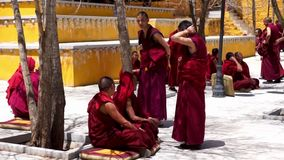 Monks debate at Sera monastery - Tibet. Lhasa, Tibet - April 23: Tibetan monks at Sera monastery debating in the courtyard stock video