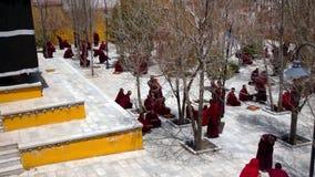 Monks debate at Sera monastery - Tibet. Lhasa, Tibet - April 23: Tibetan monks at Sera monastery debating in the courtyard stock footage