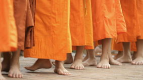 Monks stock footage
