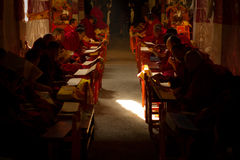 Monks of Drepung Monastery Lhasa Tibet Stock Photos
