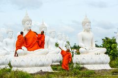 Monks dressing one of White Buddha Image with robes Stock Image