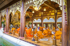 Monks Evening Chant in Wat Rampoeng temple. CHIANGMAI, THAILAND: APRIL 26, 2015 - Monks Evening Chant in Wat Rampoeng temple on April 26,2015 ,Chiangmai Stock Photos