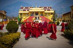 Monks of Gyuto monastery, Dharamshala, India Stock Photo