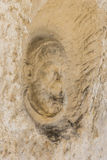 Monks head at Hermitage of San Bartolomeo Italy. Monks head carved from the limestone rock at Hermitage of San Bartolomeo in Legio Italian: Eremo di San Royalty Free Stock Image