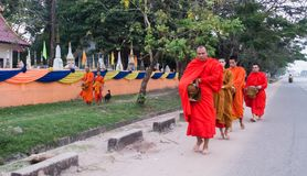 The monks of Laos. In Laos, where all people believe in Buddhism, a man must experience being a monk once in his life. Monks are a socially respected occupation Royalty Free Stock Image