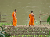 The monks and the river. Two young monks watching the Mekong river flow by in Luang Prabang, Laos stock images