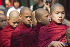 Monks in a row. Monks, collectively known as the Sangha, are venerated members of Burmese society. In these image they are going to lunch. Taken in Ho Chi Minh Stock Image