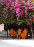 Monks in the shade of the old bougainvillea Stock Images