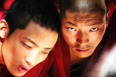 monks tibet Royaltyfri Bild