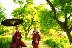Monks. Two little Buddhist monks running outdoors under shade of green tree, outside monastery, Myanmar stock photo