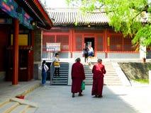 Monks walking inside the lama temple Stock Photo