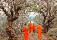 Monks at Wat Phu, Laos. Monks in orange clothes visiting Wat Phu temple near Champasak, Southern Laos. Wat Phu, a famous UNESCO world heritage site, is a ruined