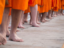 Monks were Walking Bare Feet Royalty Free Stock Image
