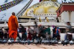 Monnik die in een tempel bidden Royalty-vrije Stock Afbeelding