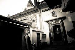 Monnik van de Tibetaanse Tempel van Drubgon Jangchup Choeling, Katmandu, Nep Stock Fotografie