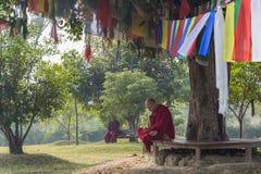 Monniken die onder een boom in Lumbini, Nepal zitten royalty-vrije stock fotografie