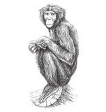 Mono libre illustration