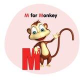 Mono con alfabeto Foto de archivo libre de regalías