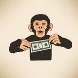 Mono con el dólar Foto de archivo libre de regalías