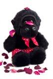 Mono con los boxeadores de la impresión del corazón Fotografía de archivo