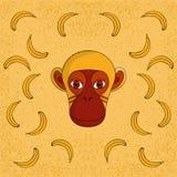Mono con los plátanos Fotos de archivo