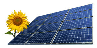 Mono-crystalline solar panels and sunflower Royalty Free Stock Photography