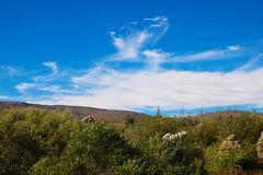 Mono de Dalingskleuren van de Provincie bij de piek - Mammoetmeren Californië de V.S. royalty-vrije stock foto's
