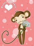 Mono de la miel Foto de archivo