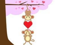 Mono de los pares en amor junto Foto de archivo libre de regalías