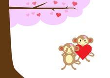 Mono de los pares en amor junto Fotografía de archivo libre de regalías