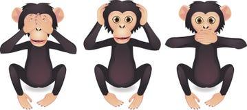 Mono del árbol Imagenes de archivo