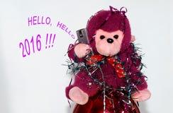 Mono del Año Nuevo 2016 Imagenes de archivo