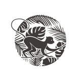 Mono del Año Nuevo en el ejemplo tropical de la selva Fotos de archivo libres de regalías