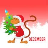 Mono divertido vestido como Santa Claus con el árbol de navidad Fotos de archivo libres de regalías
