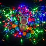 Mono en decoraciones de la Navidad Fotos de archivo libres de regalías