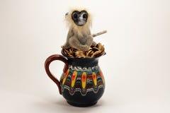 Mono en el jarro con las monedas de oro Fotos de archivo