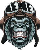 Mono en piloto del casco ilustración del vector