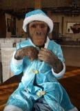 Mono en traje de la Navidad Fotografía de archivo