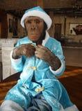 Mono en traje de la Navidad Foto de archivo