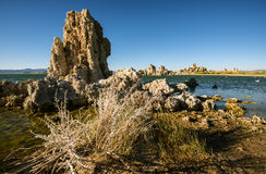 Mono jezioro, Kalifornia, usa Zdjęcie Royalty Free